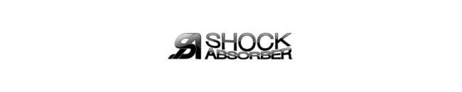 Shock Absorber 1