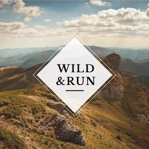 Wildrun 2