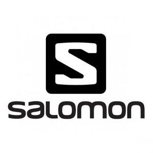 salomon 2